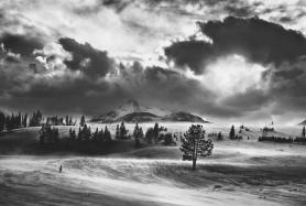 Holmes_b_w_backlit_winter