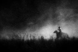 wrangler_abstract